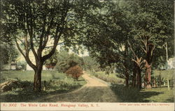 The White Lake Road