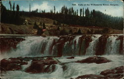 Falls of the Willamette River