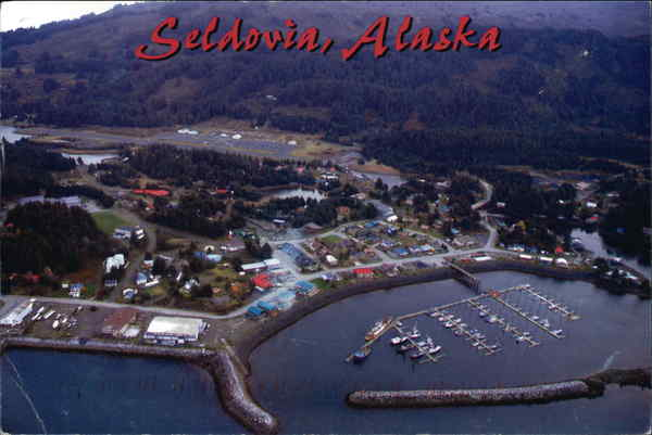 Aerial View of Seldovia Alaska