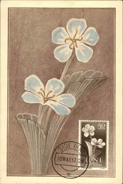50 cts Stamp of Two Blue Flowers Maximum Cards