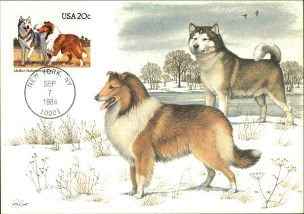 Alaskan Malamute Stamp Maximum Cards