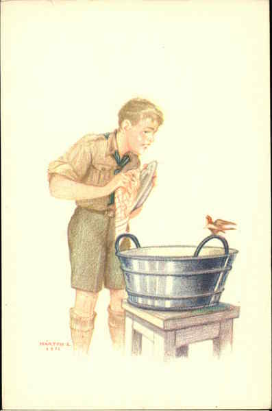 Boy Scout Looks at Red Bird on Handle of Tub He's Using to Wash Dishes
