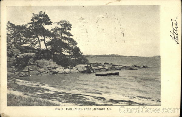 Fox Point Pine Orchard Connecticut
