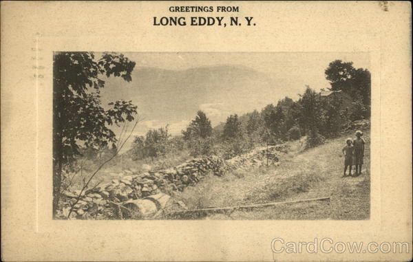 Greetings from Long Eddy New York