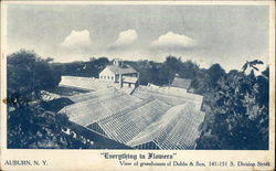 View of Greenhouses of Dobbs & Son