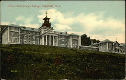 Mount Saint Mary's College
