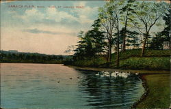 Bowl at Jamaica Pond Postcard