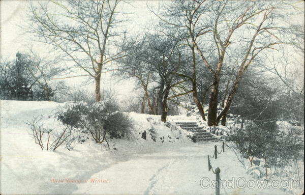 Park Path in Winter Snow - Quadrotone Post Card Advertising