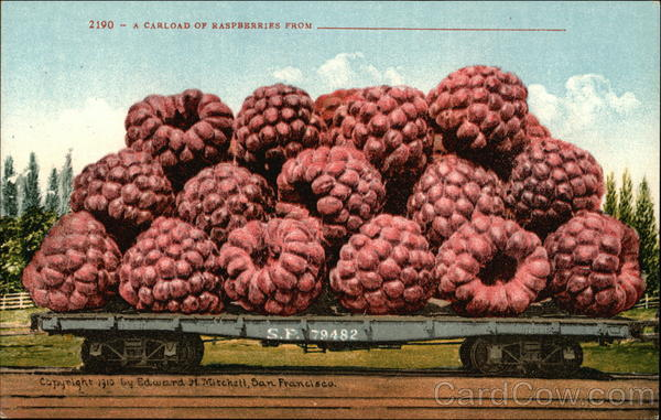 A Carload of Raspberries From Exaggeration