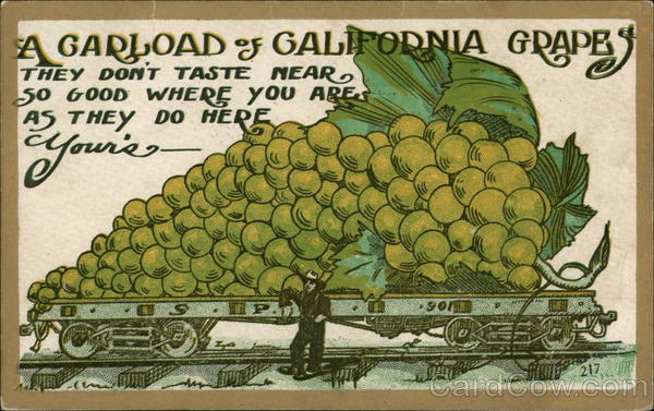 A Carload of California Grapes They Don't Taste Near so Good Where you are as They do Here