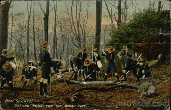 Boy Scouts Cutting Wood for the Camp Fire