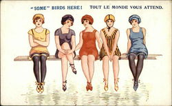 """Some"" Birds Here! Tout le Monde Vous Attend Postcard"
