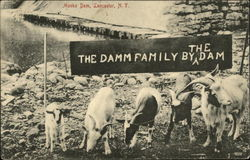 Mooks Dam, Lancaster, N.Y., The Damm Family by the Dam