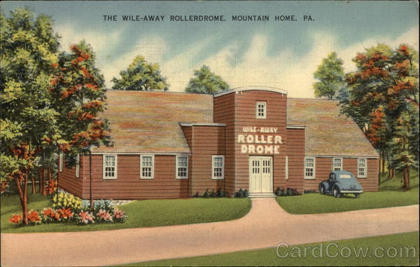 The Wile-Away Rollerdrome Mountain Home Pennsylvania