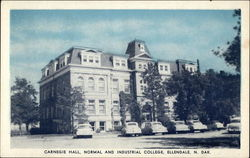 Carnegie Hall, Normal and Industrial College