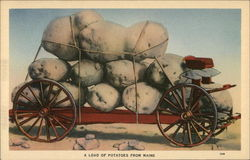 A Load of Potatoes from Maine