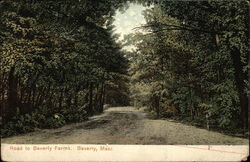 Road to Beverly Farms