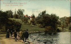 Green Hill Park - Watching the Fish Postcard