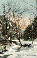 Winter Scene, Tully Brook