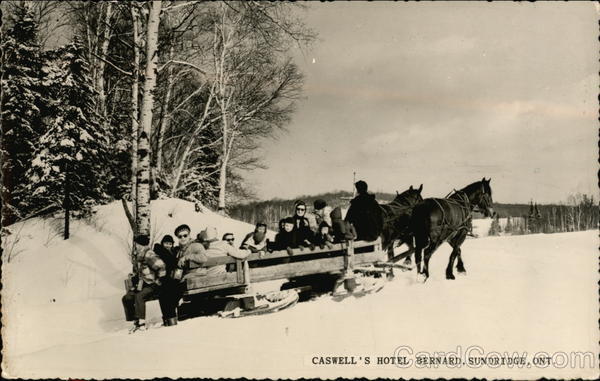 A Sleigh Ride Party from Caswell's Hotel Bernard Sundridge Canada