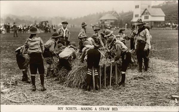 Boy Scouts Making a Straw Bed