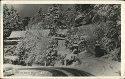 Snow Scene on Huon Highway Postcard