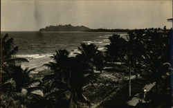 View of tropical island, beach, and palm trees.