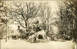 Snowy Winter Scene of House and Trees