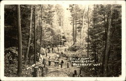 Eagle Scouts' Forestry Camp