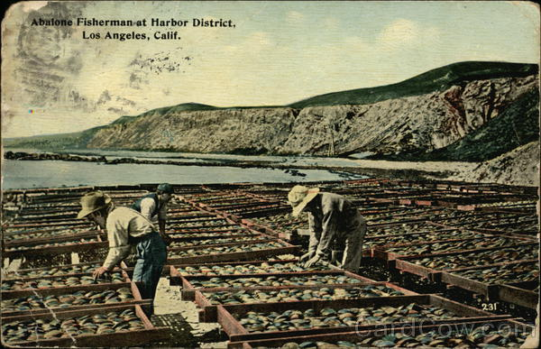 Abalone Fishermen, Harbor District Los Angeles California