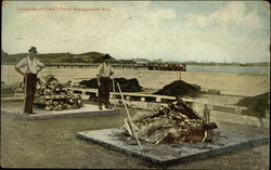 Clambake at Field's Point Postcard