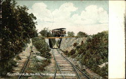 Five Mile Tree Bridge, Switchback Railway