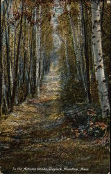 In the Autumn Woods, Greylock Mountain