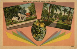 Center of Scenic, Citris Florida Postcard