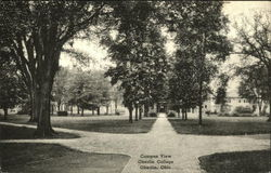 Campus View of Oberlin College Postcard