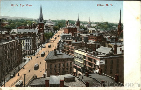 Bird's Eye View of the City Utica New York