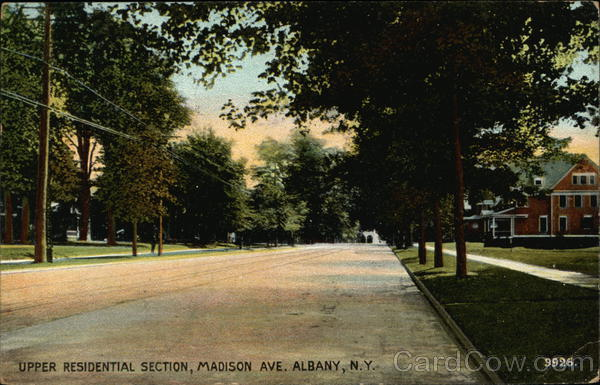 Upper Residential Section, Madison Avenue Albany New York