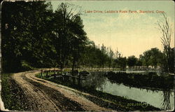 Lake Drive, Laddin's Rock Farm Postcard