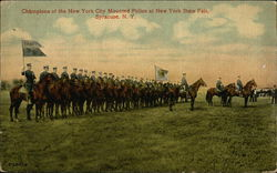 Champions of the New York City Mounted Police at New York State Fair