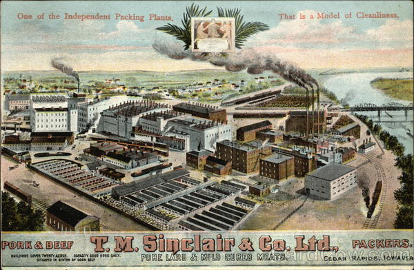 One of the Independent Packing Plants. That is a Model of Cleanliness T.M. Sinclair & Co. Ltd. Cedar Rapids