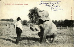 To be seen with Hall's animal shows
