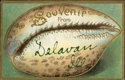 Souvenir From Delavan, Ill.
