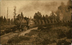 Logging Train on the Way to the Mill