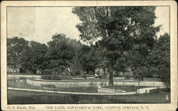 The Lake, Sanitarium Park