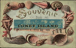 Souvenir From Coney Island