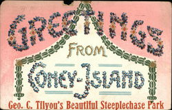 Greetings from Coney Island Geo. C. Tilyou's Beautiful Steeplechase Park