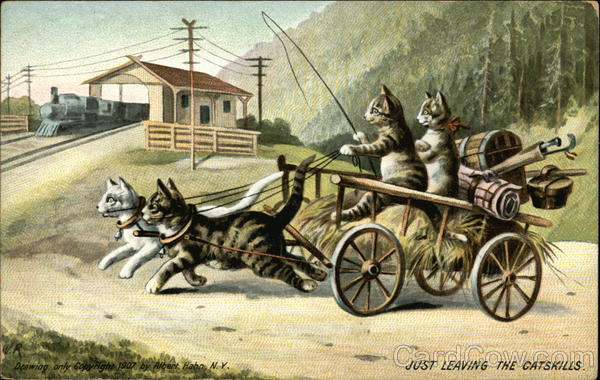Cat Pulling Wagon : Just leaving the catskills cats pulling and driving a