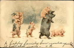 A family of pigs walking in the snow