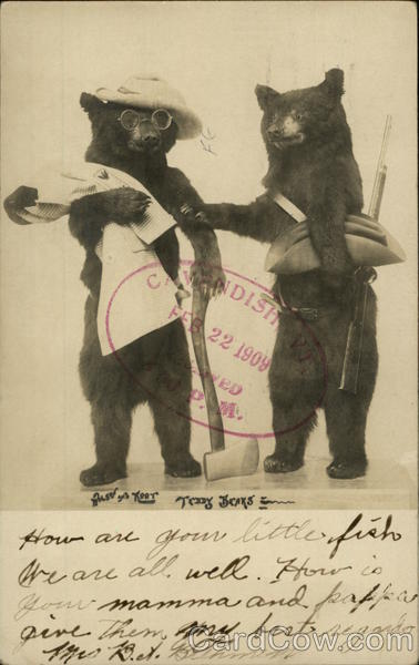 Wilson and Root, Vacationing Teddy Bears