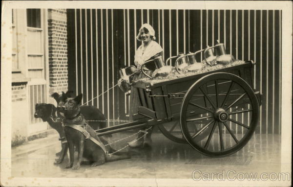 Flemish Milkmaid with Dog Cart Belgium Benelux Countries